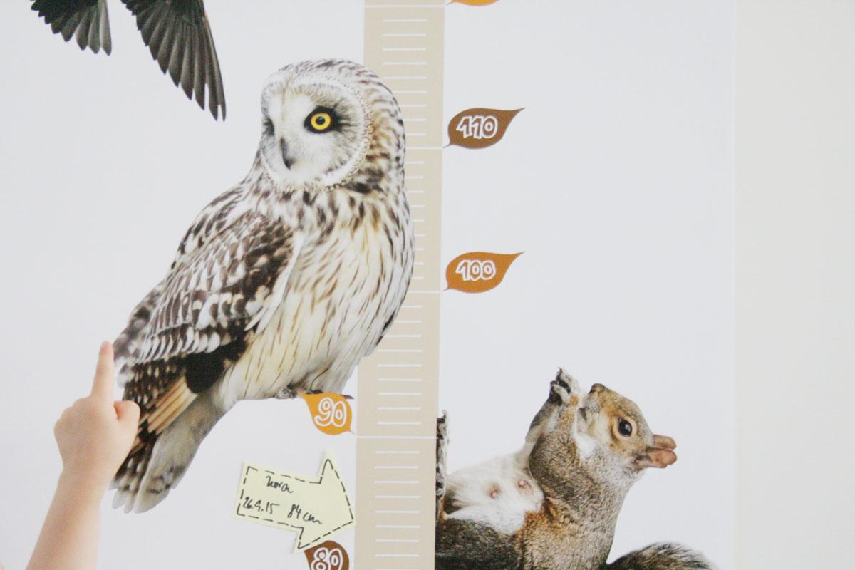 Messlatte basteln: Tierisches Geschenk für laufende Meter